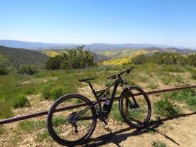Biking Through A Painting: Carrizo Plain